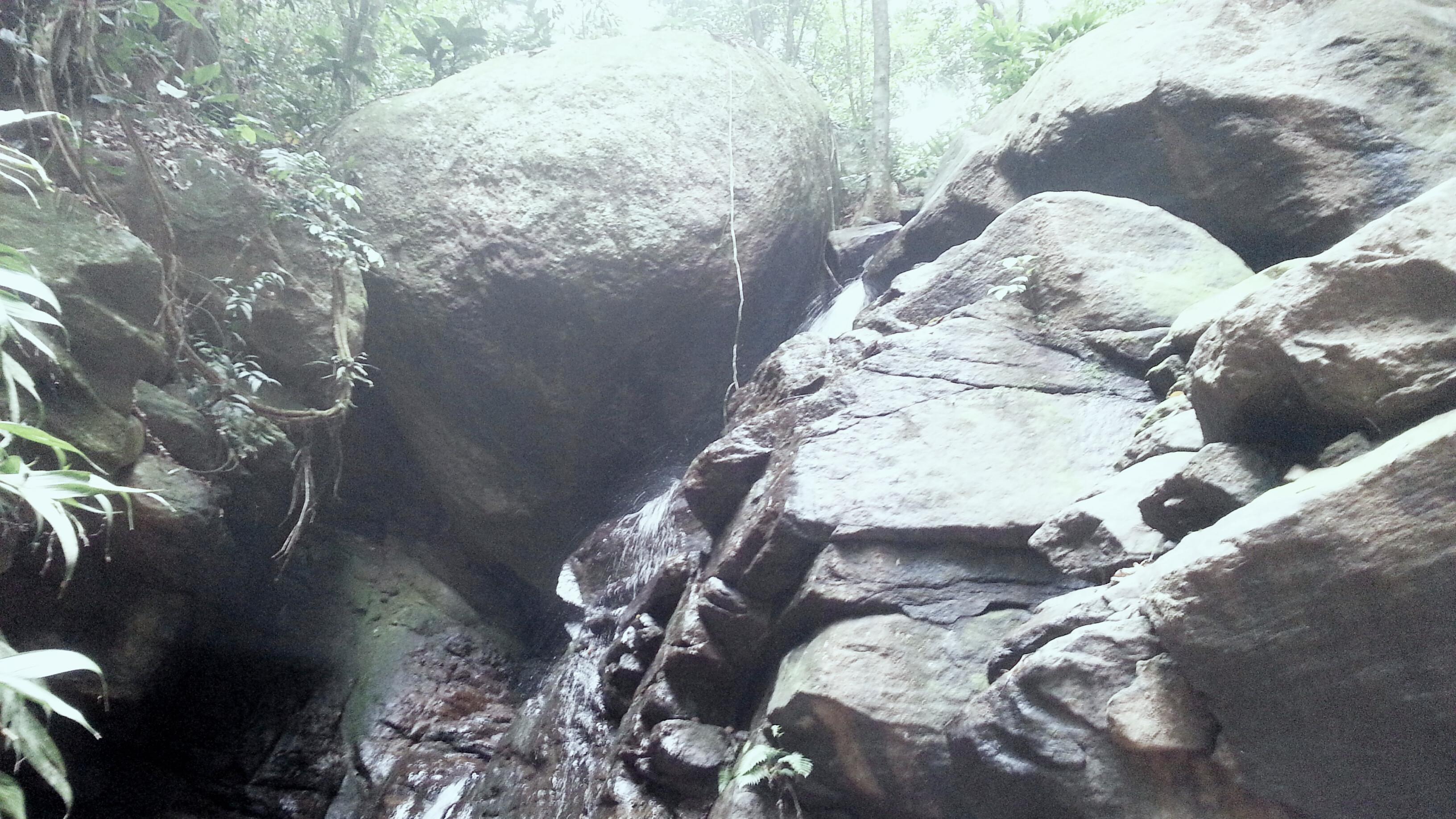 Fui fazer uma trilha, contemplar a natureza, ter um bom papo. Foi o melhor investimento do meu tempo.
